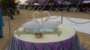 Ibinabo and Uche's wedding cake!